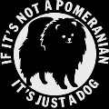 If its not a Pom, its just a 